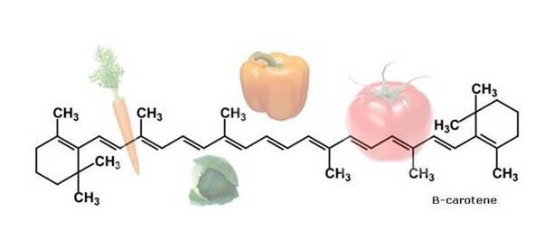 Risultati immagini per carotenoidi